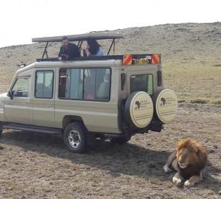 4-Day Kenya Highlights Safari