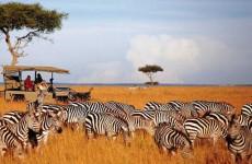 7-Day Northern Kenya & Lakes Safari