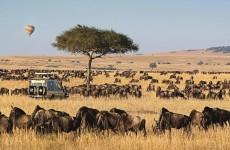 4-Day Bush & Lake Safari