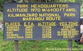 Marangu 7