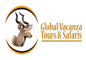 Global Vacanza Tours and Safaris