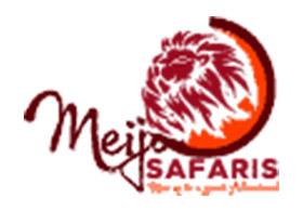 Meijo Safaris