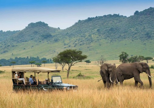 Seeing Elephants On A Game Drive In The Masai Mara