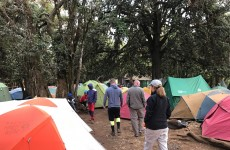 8-Day Kilimanjaro Climb Lemosho Route