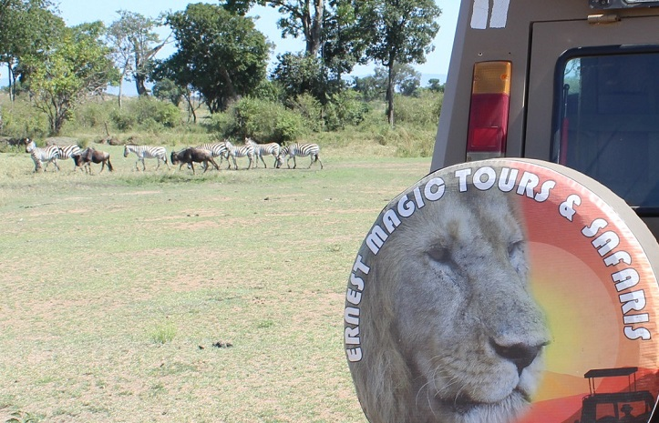 Best Safari Tour Package In Tanzania For July And August