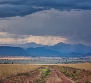 12-Day Uganda Safari