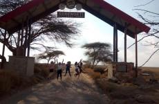 7-Day Classic Tanzania Tour