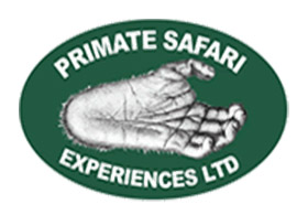 Primate Safari Experiences