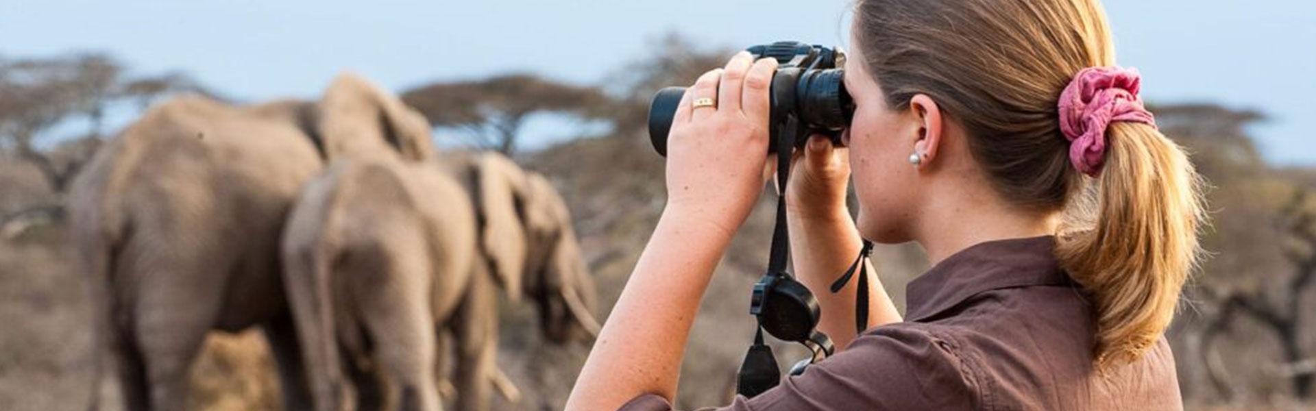The Beginner's Guide to a Solo Safari