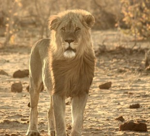 Namibia, Travel With Purpose