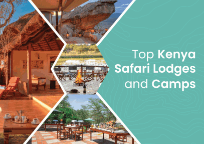 Top Kenya Safari Lodges and Camps