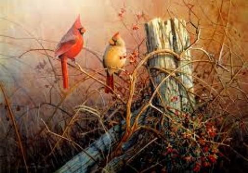 Wildlife Paint Bird