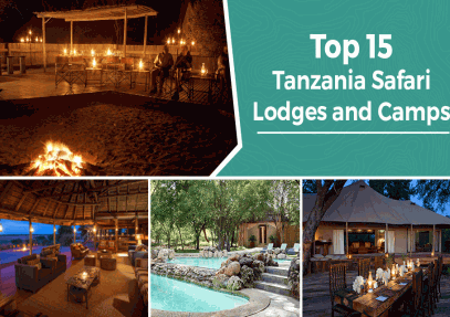 Top 15 Tanzania Safari Lodges and Camps