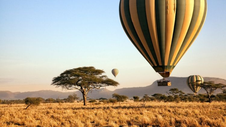 3 Day Private Fly In Serengeti Tour With Hot Air Balloon Tour 2 263221 1510029029