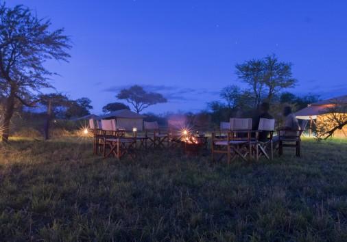Acacia Campfire