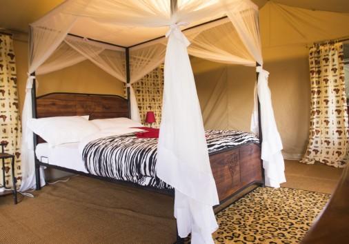 Acacia Tent