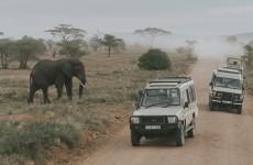 7-Day Aberdare, Bogoria, Naivasha and Masai Mara