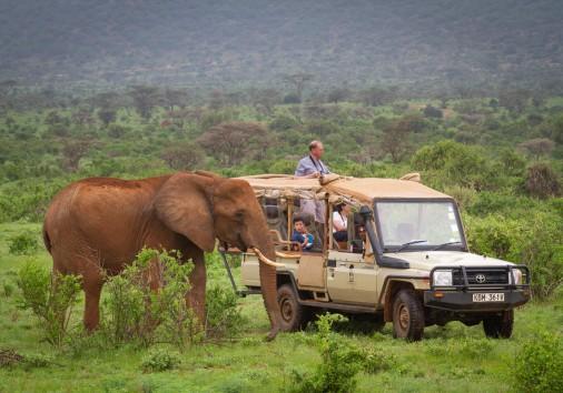 Elephant Bedroom Camp Samburu 45