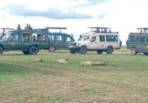 Maasai Mara Game Mara