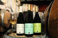 Namibia Wine Tour
