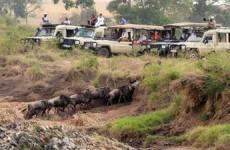 7-Day Samburu, Ol Pejeta, Naivasha and Masai Mara