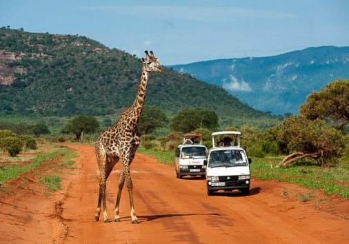 Tsavo East National Park 015