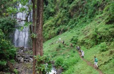 1-Day Materuni Waterfalls, Coffee Tour & Kikuletwa Hot Springs