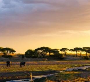 3 Days Safari Tarangire, Ngorongoro Crater and Lake Manyara