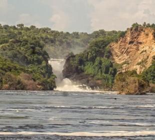 3-Day Murchison Falls and Rhino Tracking Safari