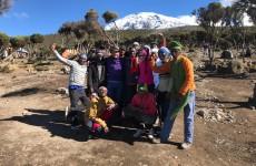 8 Days Lemosho Route Kilimanjaro Climb