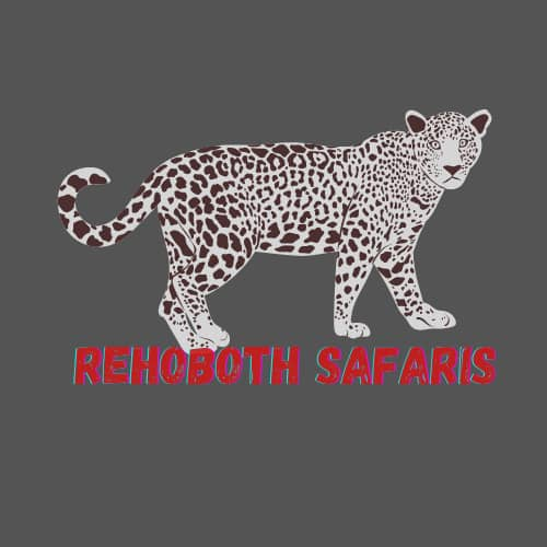 Rehoboth Safaris