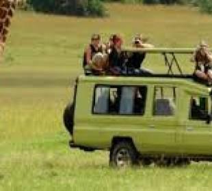 4 Days Game Drive Safari in Serengeti National Park