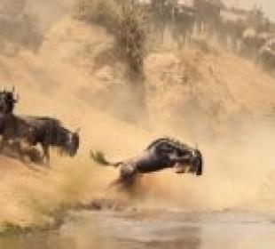 3 Days Masai Mara Lodge Safari