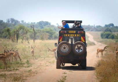 8-Day Queen Elizabeth, Lake Mburo and Bunyonyi Safari