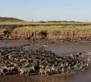 8-Day Great Wildebeest Migration Safari