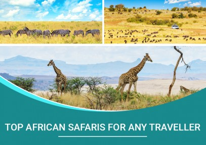 Top African Safaris for any Traveller