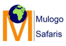 Mulogo Safaris