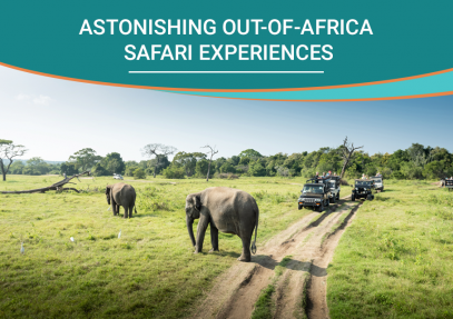 Astonishing Out-of-Africa Safari Experiences